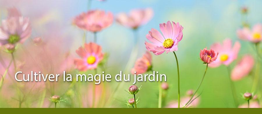 Bannière Livres cultiver la magie jardin